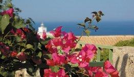 Italiaans eiland Capraia