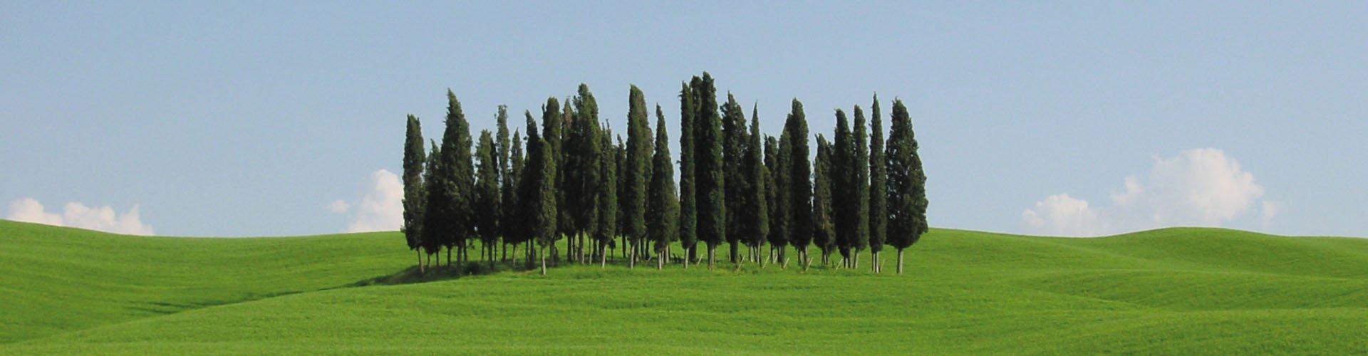 Banner Italië