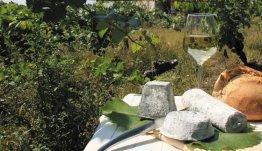 Franse kazen en wijn