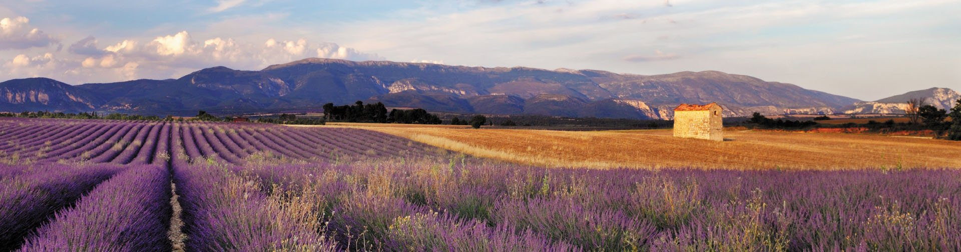 Banner foto Provence