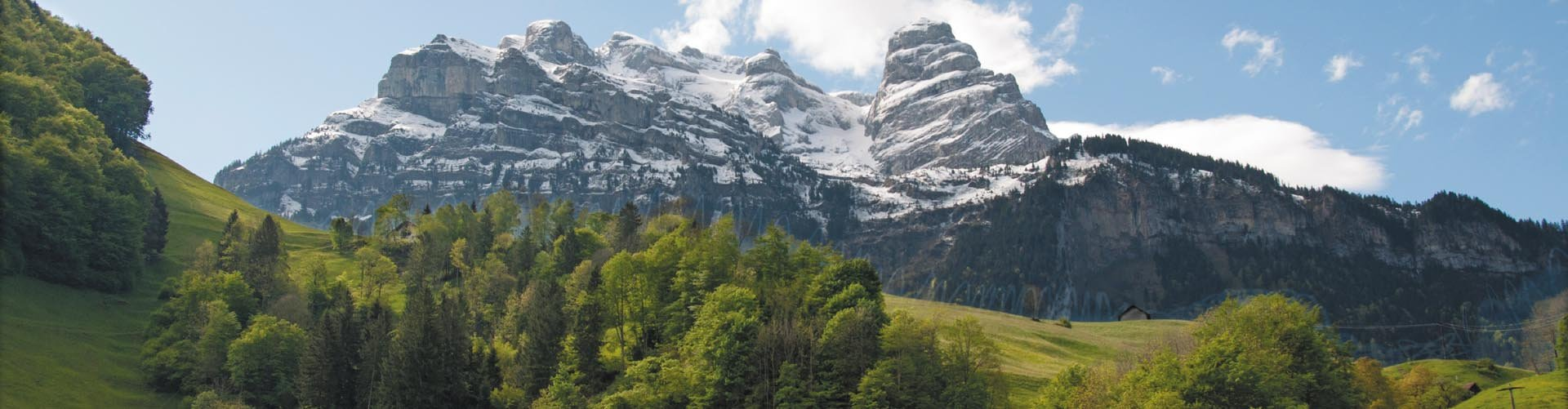 Banner Zwitserse Alpen