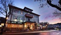 Hotel Lovec - pub