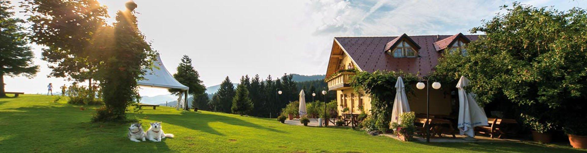 Guesthouse Smogavc hotel, Slovenië