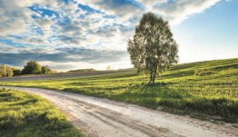 Wijds landschap van Polen