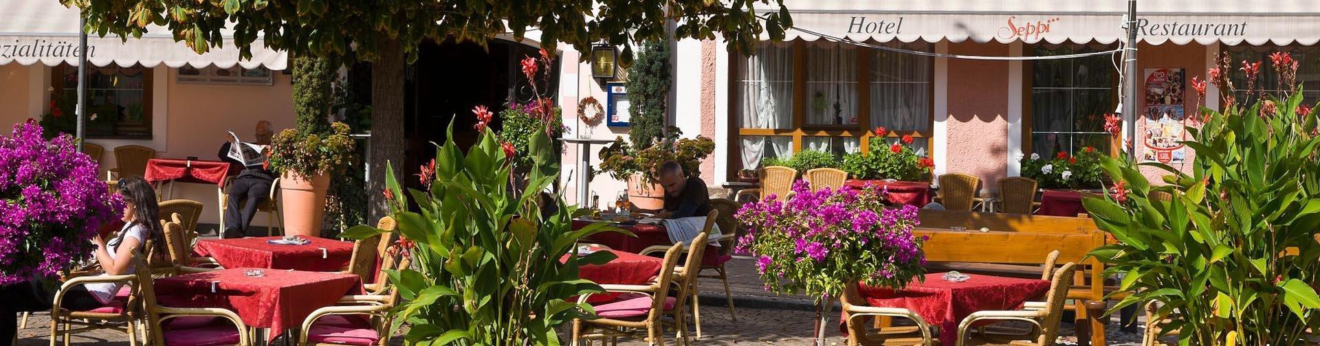 Banner Hotel Seppi in Mühlbach | Dolomieten | Italië