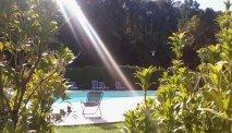 Het zwembad bij Hotel Cortese