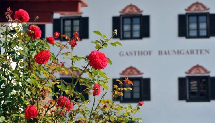 Heerlijke tuin van Gasthof Baumgarten
