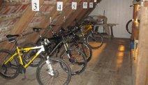 In de omgeving van Parkhotel Flora kunt u fantastische fietstochten maken