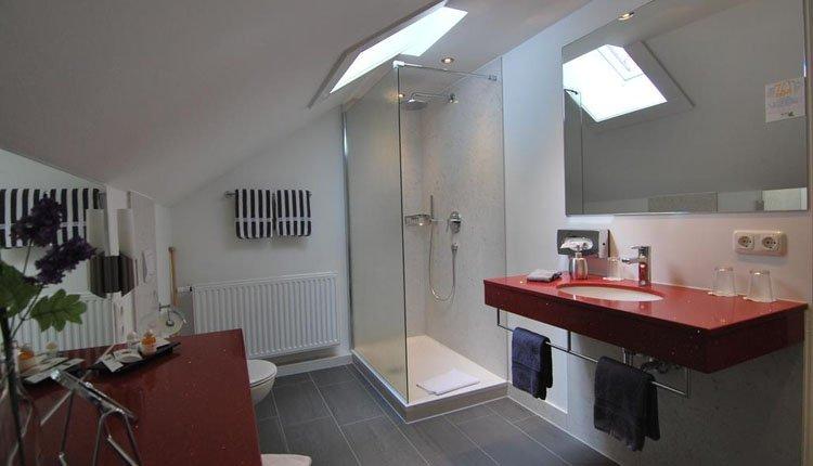Hotel Turmwirt  - badkamer