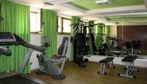 De fitnessruimte in Hotel Ambassador