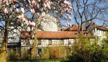 Hotel Zum Goldenen Ochsen in Aschaffenburg