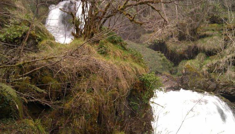 Geweldige natuur in de omgeving van Hotel Cosgaya