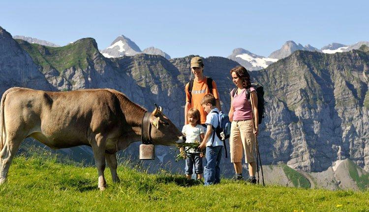 Trek heerlijk met de familie eropuit bij Hotel Nidwaldnerhof