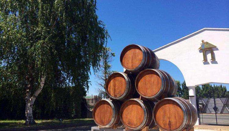 Hotel Ciudad de Haro - de vaten met zalige Rioja wijnen