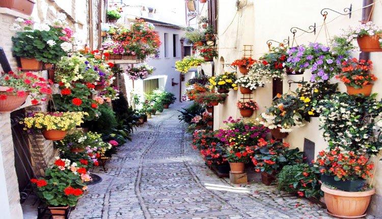 Het prachtige historische en kleurrijke Spello in Umbrië