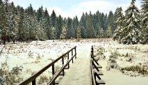 Het oneindige Thüringer Wald