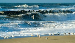 Denemarken - Zuid-Denemarken - zee en stranden