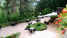 Hotel Ribno in Bled ligt dierect aan een fantastisch sparrenbos