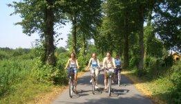 3-Daags Fietsarrangement Borken, gezellig met een groepje fietsen door een parchtige omgeving