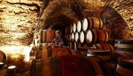 Wijnkelder in omgeving Beaune