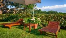Heerlijke tuin met ligbedden