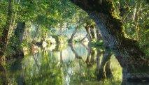Le Marais Poitvevin, ook wel het groene Venetië