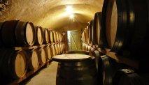 De wijnkelder van het domein