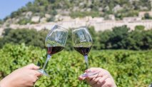 De wijnen van het Domaine